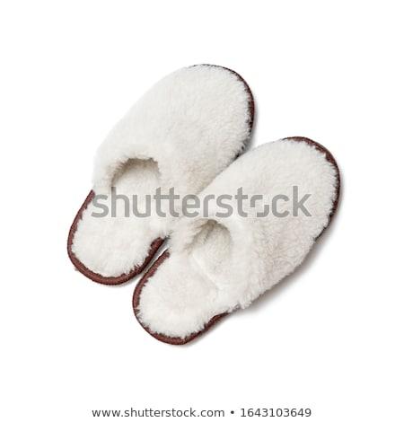 modern · meleg · fehér · kettő · tél · izolált - stock fotó © ruslanomega