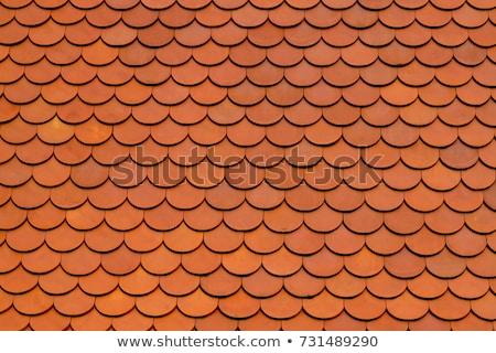 крыши текстуры плитка аннотация оранжевый глина Сток-фото © stevanovicigor