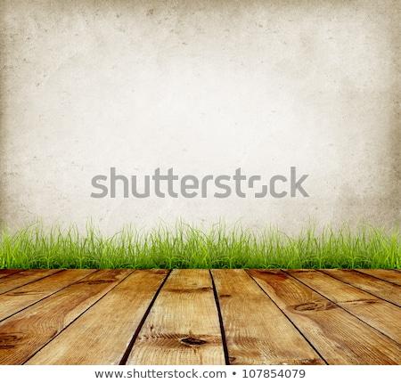 Ancient stonewall background Stock photo © Catuncia