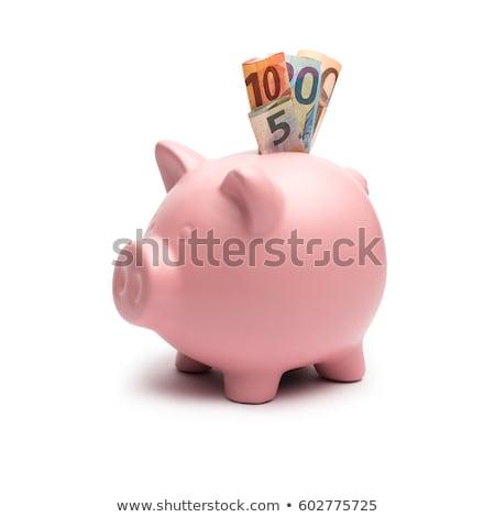 piggy bank with euro notes Stock photo © lunamarina