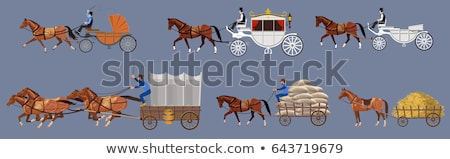 old horse carriage wooden wheel stock photo © stevanovicigor