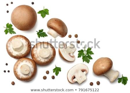 коричневый шампиньон гриб изолированный белый Сток-фото © natika