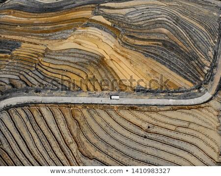 rice fields structured in terracces Stock photo © meinzahn