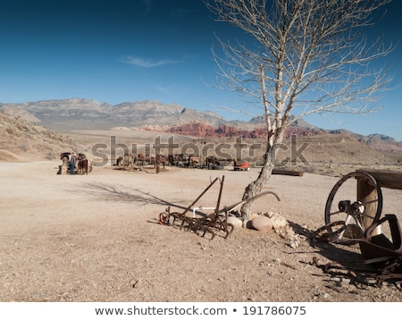horse at ranch death valley national park california usa stock photo © bmonteny