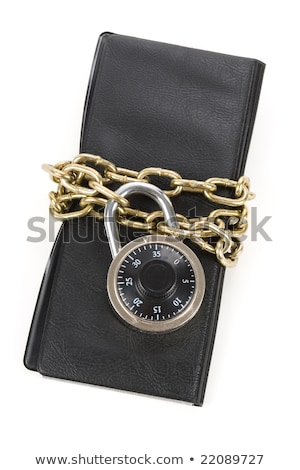 Książeczkę czekową łańcucha recesja bezpieczeństwa Zdjęcia stock © devon