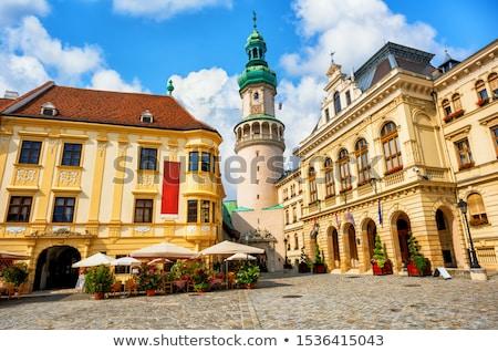 Arquitectura histórica Hungría Europa edificio ciudad pared Foto stock © Spectral