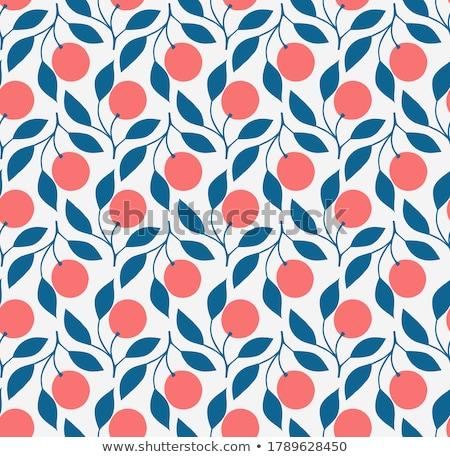 melancia · comida · pintar · fruto - foto stock © timurock