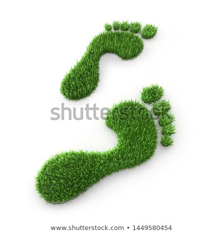 Green Grass Footsteps Stock photo © make