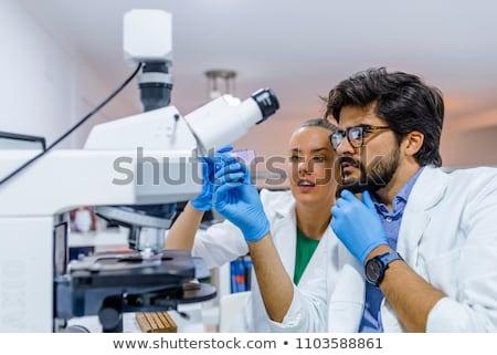 laboratuvar · çalışmak · yer · mikroskop · züccaciye · eğitim - stok fotoğraf © janpietruszka