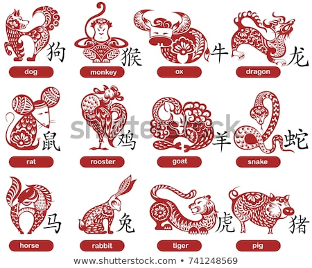 The twelve Chinese zodiac signs Stock photo © Morphart