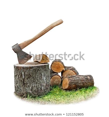 Isolado branco madeira construção trabalhar fundo Foto stock © tetkoren