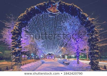 黄昏 雪 冬 森林 霜 ストックフォト © EvgenyBashta