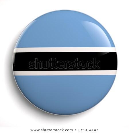 Botswana banderą owalny przycisk srebrny odizolowany Zdjęcia stock © Bigalbaloo