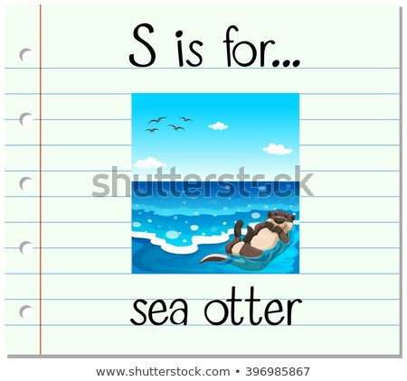 Flashcard letter S is for sea otter Stock photo © bluering