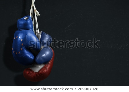 A boxing match between the European Union and Russia Stock photo © Zerbor