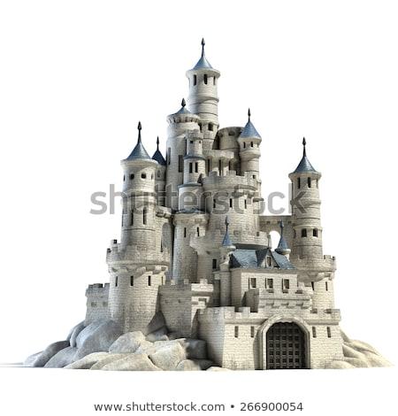 Kő kastély 3D sziget 3d render tér Stock fotó © Koufax73