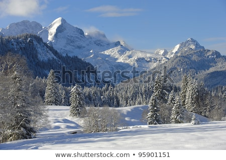 Snowy landscape in the Bavarian mountains Stock photo © kb-photodesign