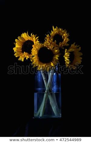 Foto stock: Girassóis · azul · vaso · ilustração · flor · natureza