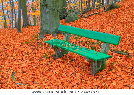Benches in Karlovy Vary Stock photo © Artlover