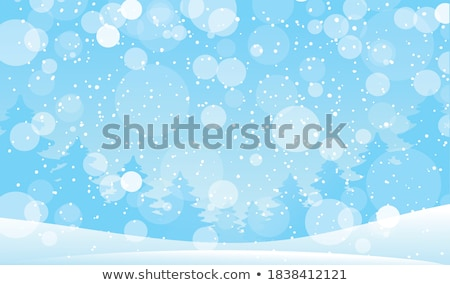 snowfall from the sky stock photo © swillskill