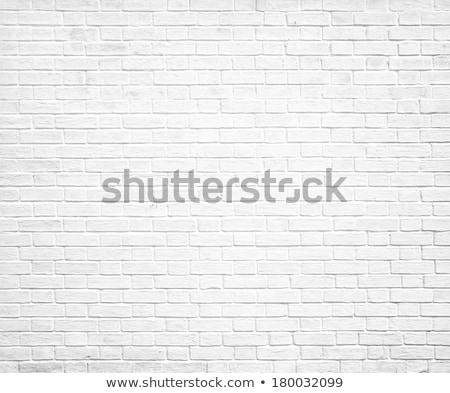 Old weathered white brick wall texture Stock photo © stevanovicigor