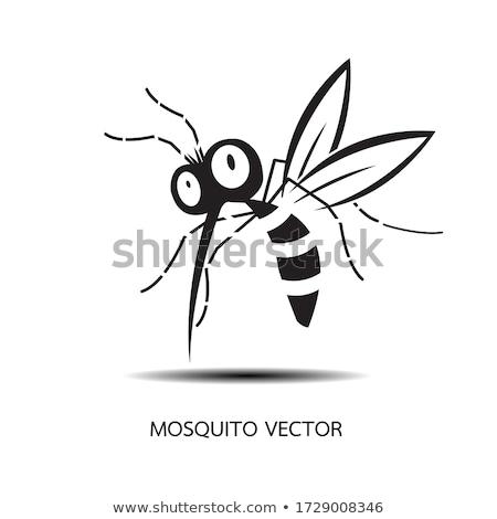Mosquito black silhouettes Stock photo © biv
