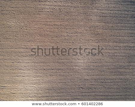 Légifelvétel megművelt kukorica termés mező textúra Stock fotó © stevanovicigor