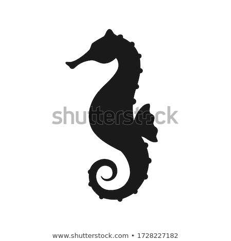 Vektor stílus illusztráció tenger ló ikon Stock fotó © curiosity