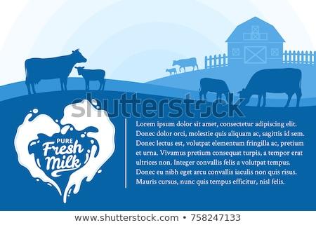 Taze süt doğal ürün afiş inek gıda Stok fotoğraf © Leo_Edition
