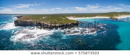 Onde canguro isola south australia spiaggia mare Foto d'archivio © dirkr