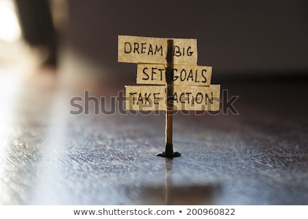 set goals take action   business concept stock photo © tashatuvango