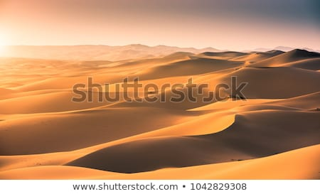 Sand dunes in Gobi desert Stock photo © MikhailMishchenko