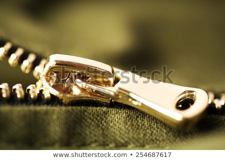 Sewing clasp close-up  Stock photo © OleksandrO