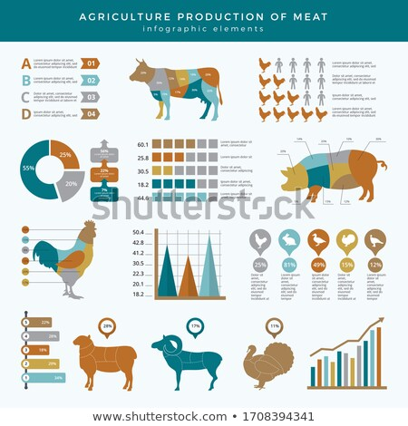 Agriculture and farming infographics Stock photo © Genestro