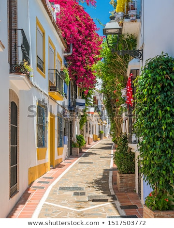 Streets of Malaga old town Stock photo © benkrut