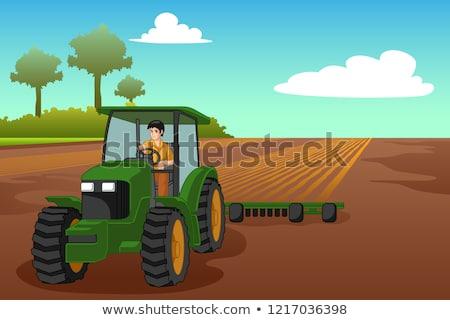 小さな 農家 ライディング トラクター 実例 男 ストックフォト © artisticco