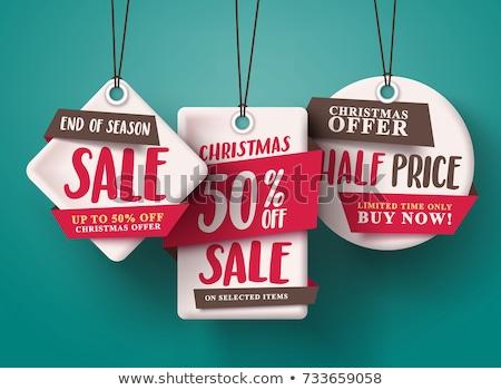 рождество скидка продажи карт зима синий Сток-фото © alexaldo