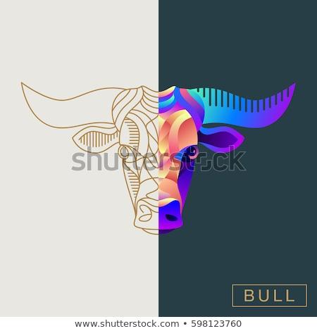 Renkli inek logo vektör ikon dizayn Stok fotoğraf © blaskorizov