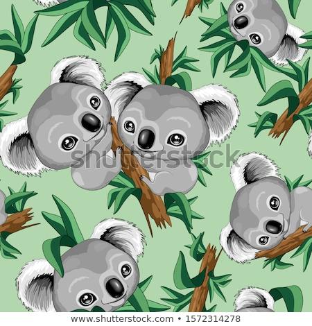 Sin costura koala ilustración wallpaper tener blanco Foto stock © colematt