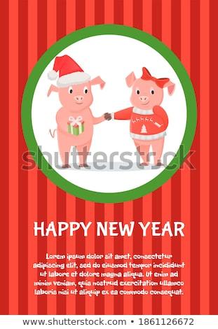 Сток-фото: мужчины · женщины · Новый · год · Рождества · свиней · Hat