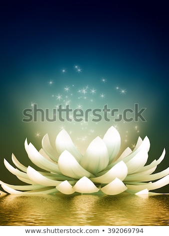 lotus flower in the moonlight Stock photo © adrenalina