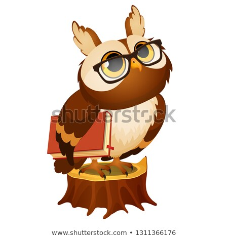 Wise owl with a book stands on a stump isolated on white background. Vector cartoon close-up illustr Stock photo © Lady-Luck