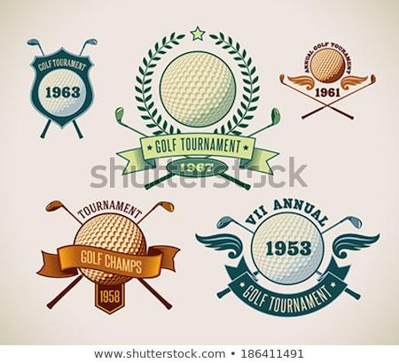 цвета Vintage гольф клуба баннер чемпионат Сток-фото © netkov1