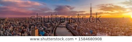 Tokio · skyline · stad · ontwerp · brug · zwarte - stockfoto © vichie81