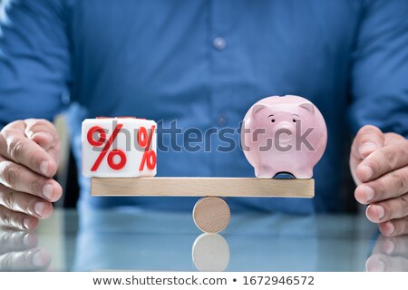 Protecting Balance Between Percentage Cubic Block And Piggybank Stock photo © AndreyPopov