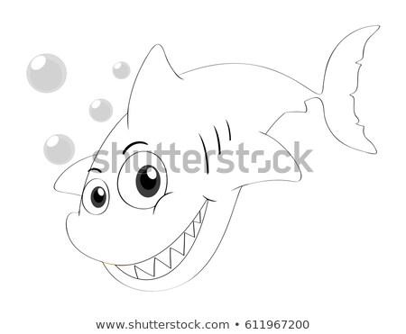 Drafting animal for shark swimming Stock photo © colematt