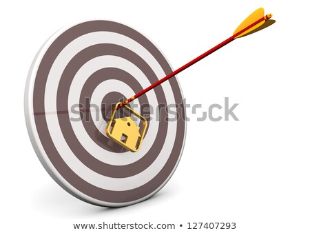 Targets Arrow House Bullseye Stock photo © limbi007