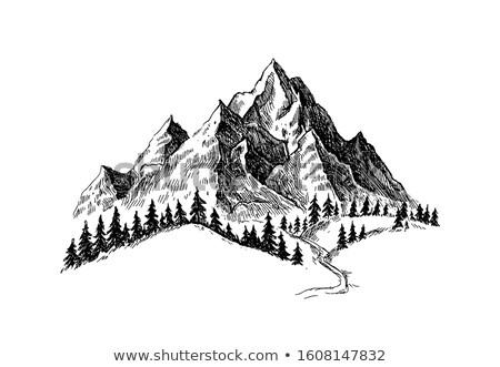 Hand trekken berg as kleur typografie Stockfoto © Vicasso