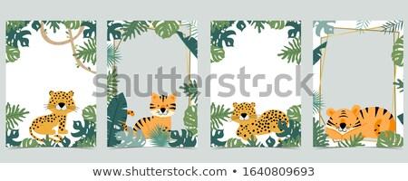 ünneplés kártya tigris illusztráció születésnap háttér Stock fotó © bluering