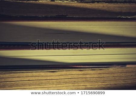 kevés · öreg · könyvek · fa · asztal · antik · könyvesbolt - stock fotó © przemekklos
